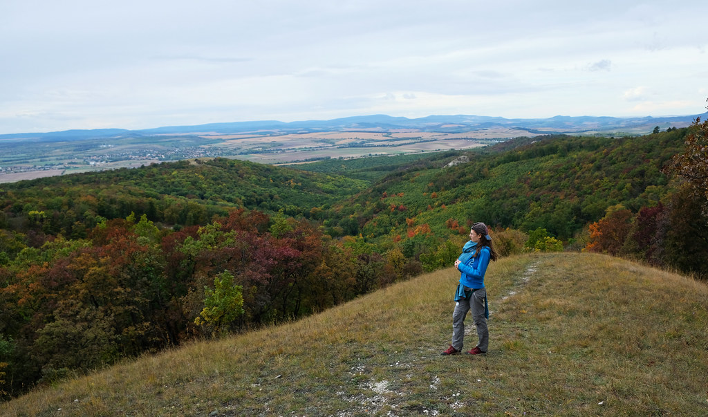 Autumn in the Buda Hills, Hungary