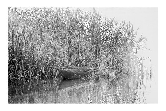 Boat Moored in reeds by the Nile | Esna, Egypt