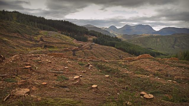 Highland Clearance...