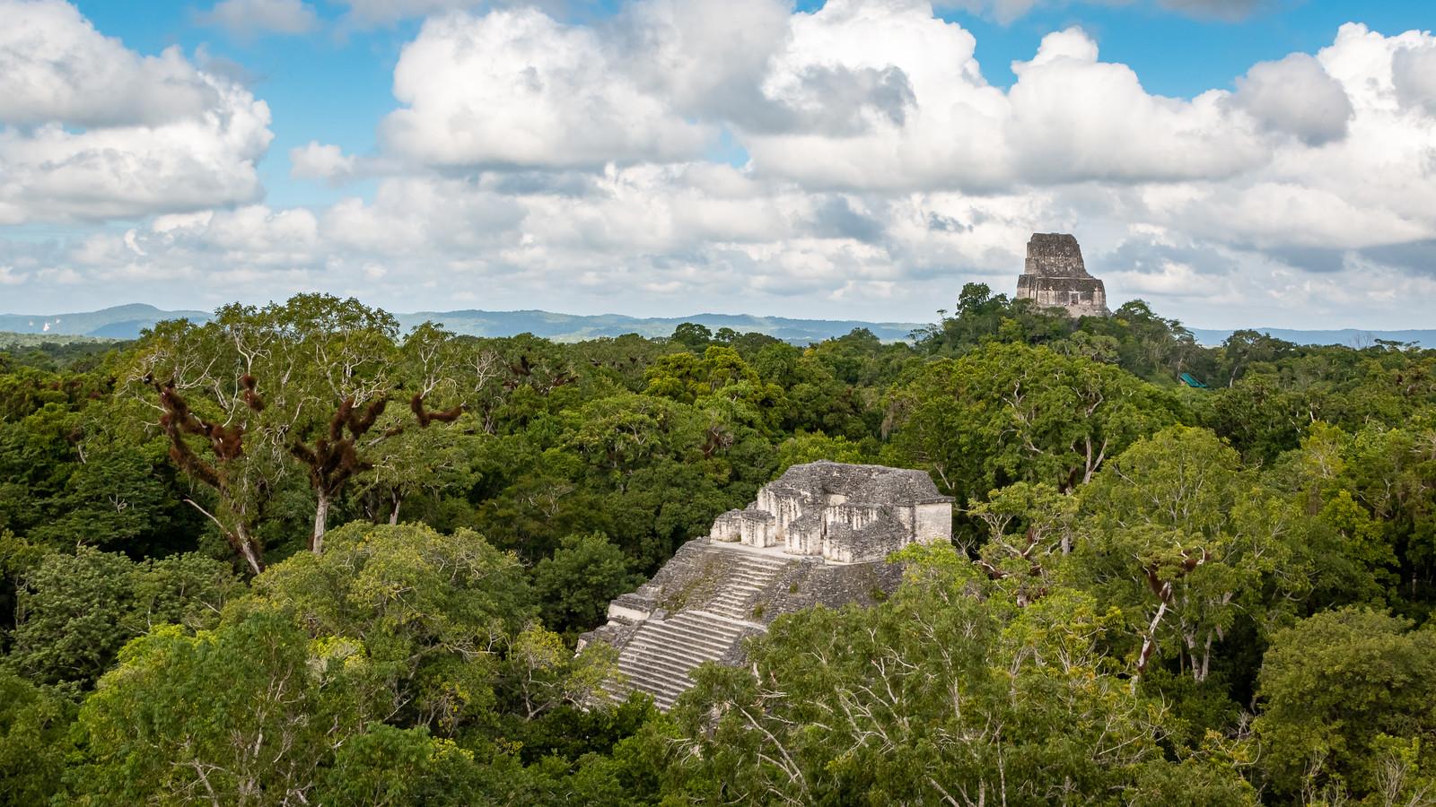 Tikal - Peten - [Guatemala]