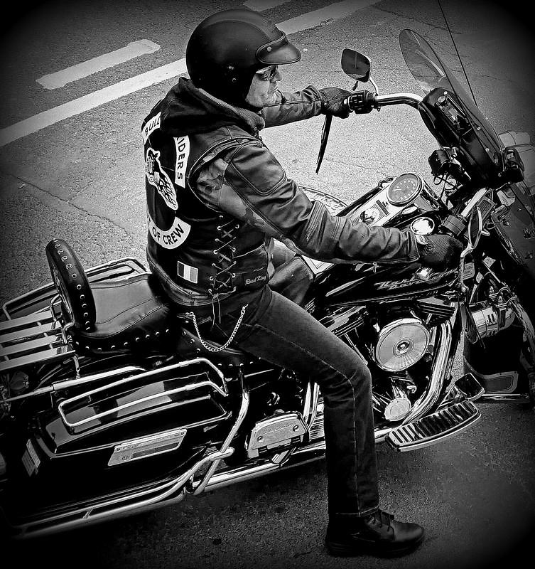 Harley 49134814392_e4e74468c7_c