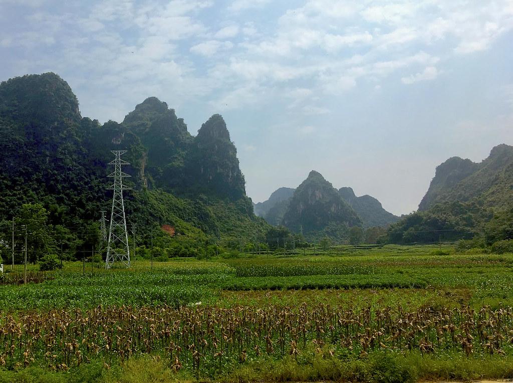 喀斯特山丘的陡峭面使之免受低窪平原地區農業替代森林的威脅。 - 透視中國