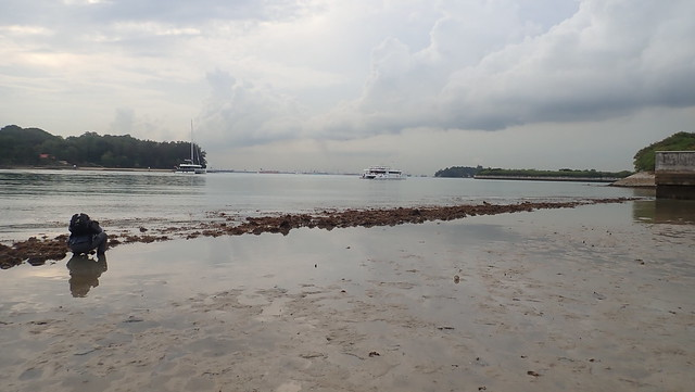 Living shores of Seringat-Kias