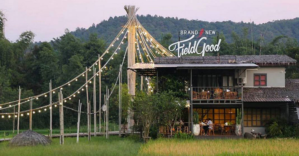 BrandNew Field Good – Cafe in Chiang Mai With Rice Paddy Views