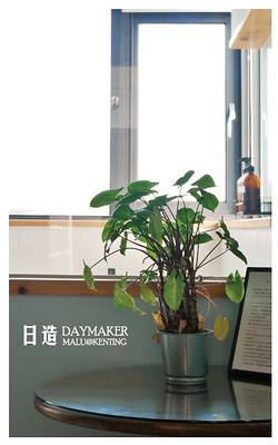 日造daymaker-19