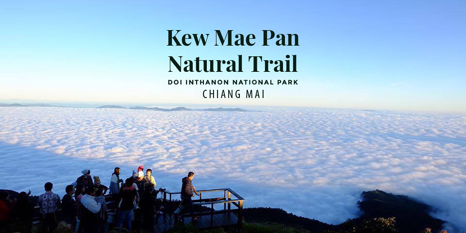 Kew Mae Pan Nature Trail – Doi Inthanon National Park (Chiang Mai, Thailand)