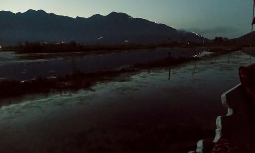 Kauri Pass-35.jpg