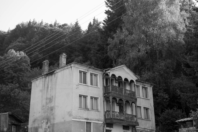 Old building in forest