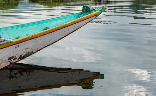 Kauri Pass-5.jpg
