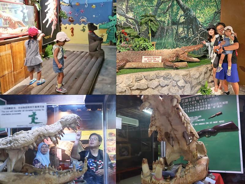 jong_crocodile_003