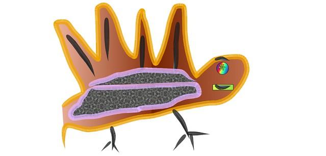 Strange Turkey