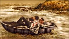 ► ﹌Cozy boat.﹌◄