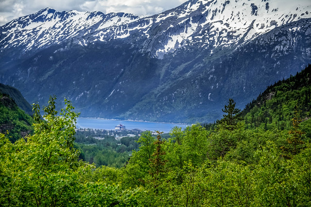 Viewing The Lynn Canal