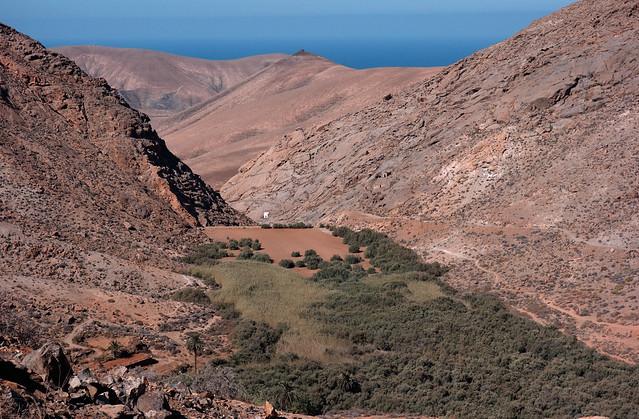 Barranco de las Peñitas (ii)