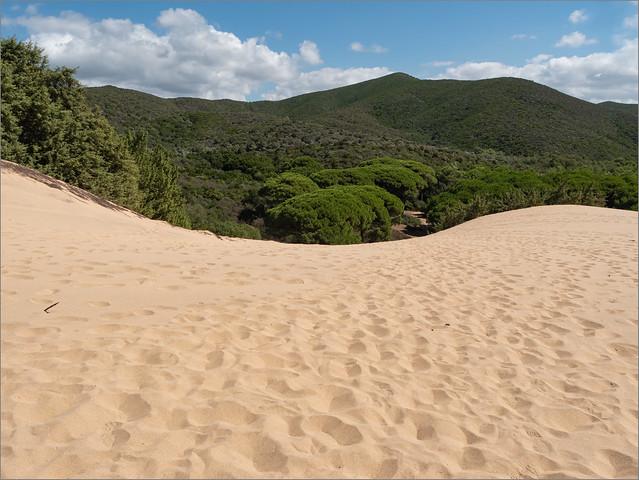 Die Dünen von Piscinas, Sardinien /  The dunes of Piscinas, Sardinia.