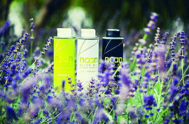 Noan Olivenöle im Lavendelfeld