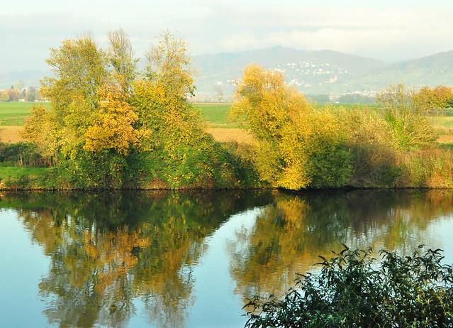 """November 2019 ... Der """"Garten der ehemaligen Schlosswirtschaft"""" Edingen liegt idyllisch am Neckar ... Foto: Brigitte Stolle"""