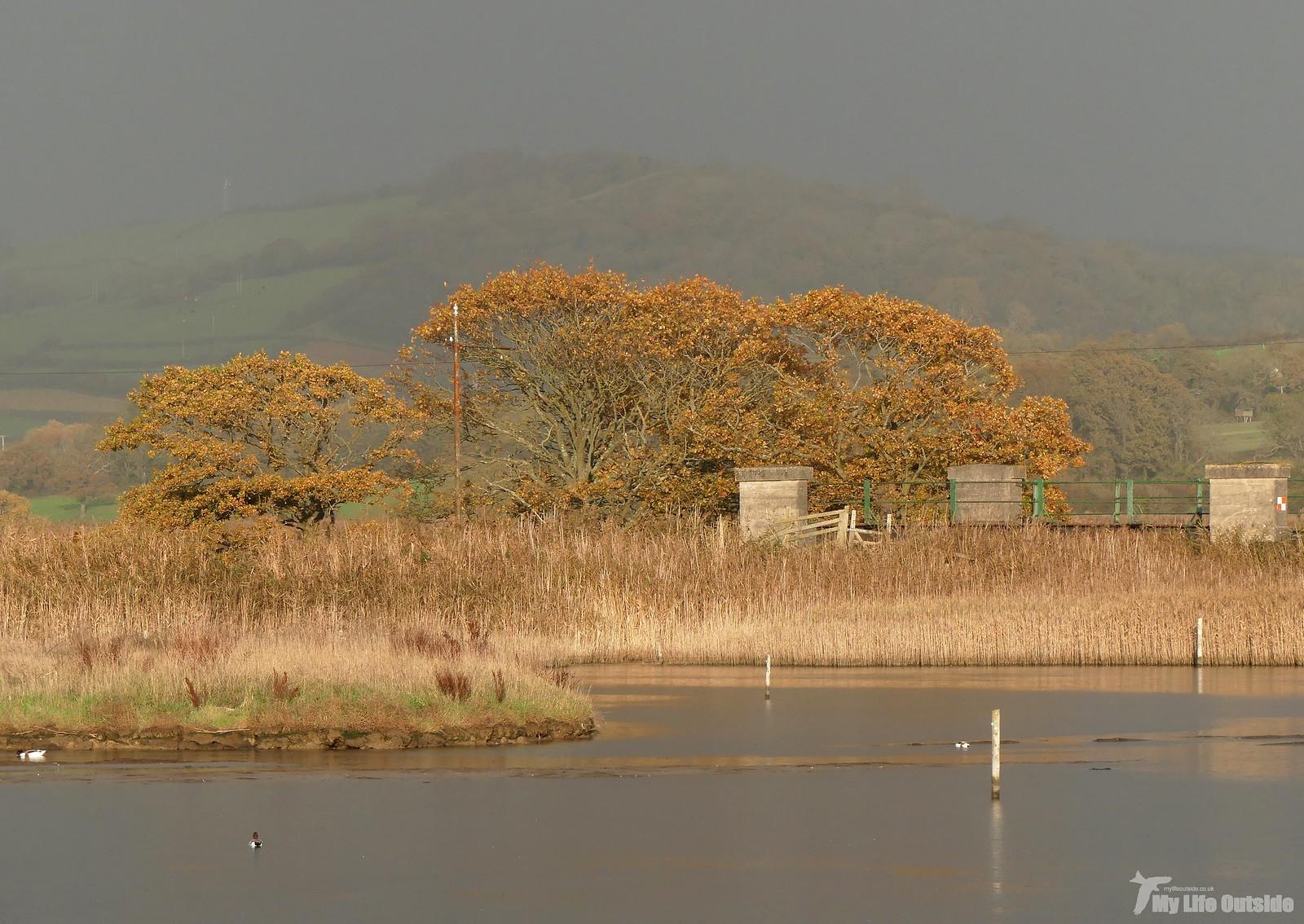 P1220621 - Seaton Wetlands