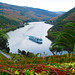 View of the river from Quinta Do Pego