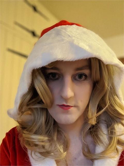 Christmas Dress (sfw)