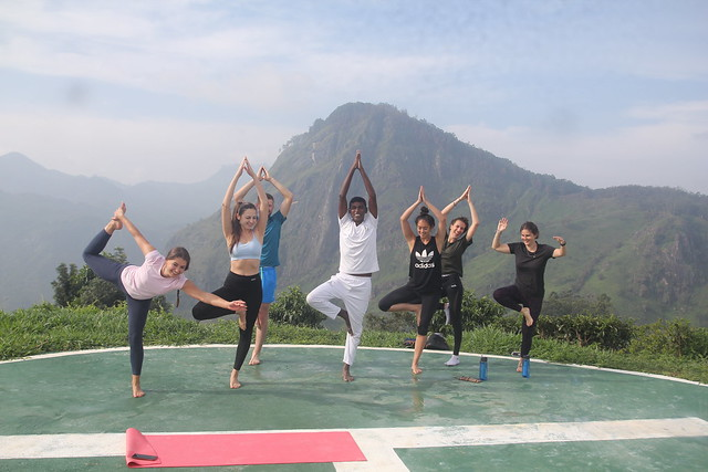 Find Ella Yoga Hub Easily