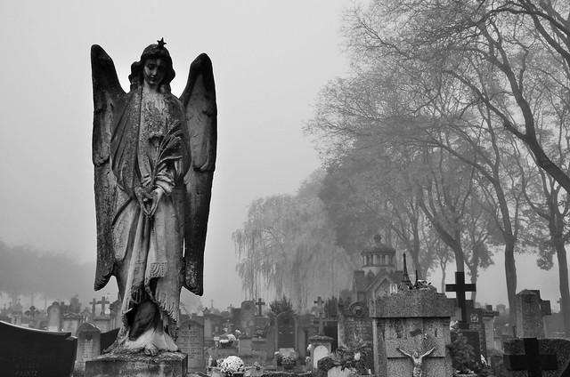 """""""Il n'existe qu'un seul ordre parfait : celui des cimetières. Les morts ne réclament jamais et ils jouissent en silence de leur égalité..."""" (Jean-Louis Cagnon)"""