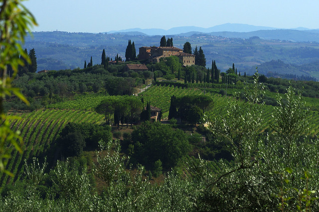Summer landscape around San Gimignano