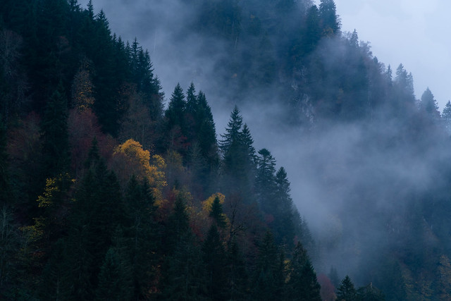 Autumn colors and clouds
