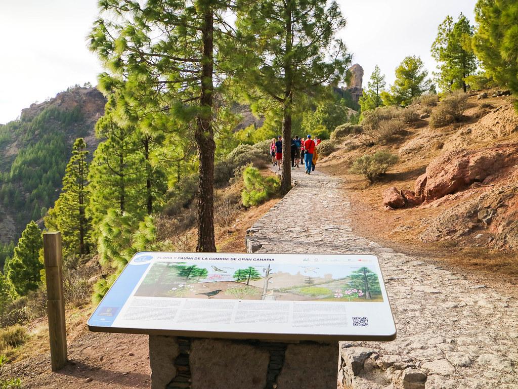 Inicio del sendero al Roque Nublo desde la Degollada de La Goleta