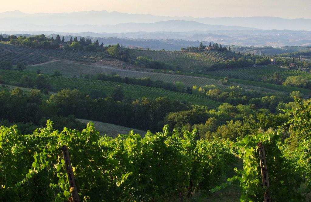 Morning landscape at San Gimignano