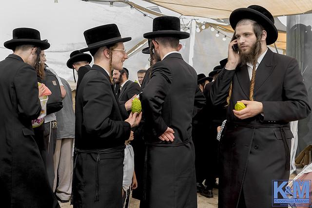Jerusalem at Sukkot: the arba minim market
