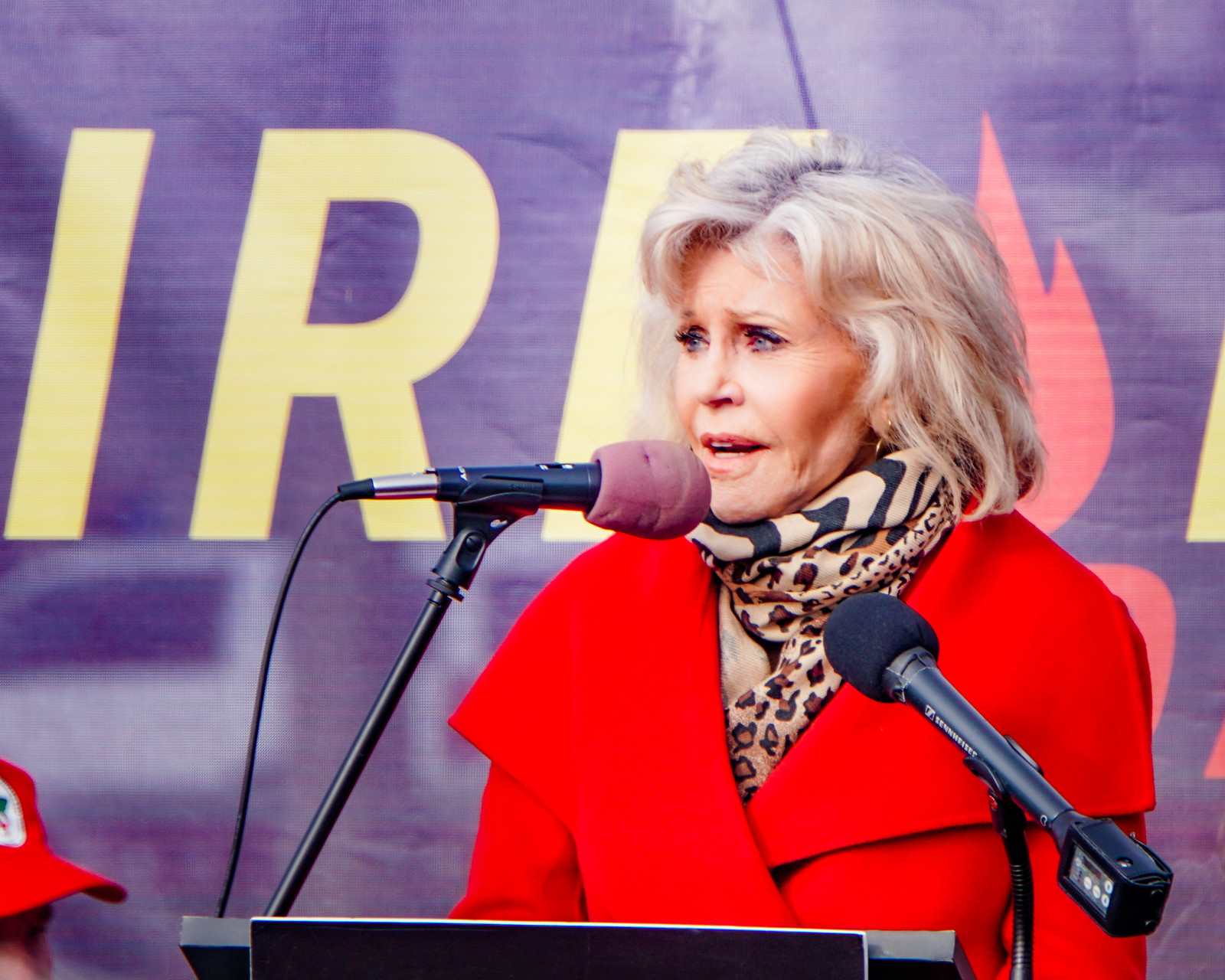 2019.11.29 Fire Drill Fridays with Jane Fonda, Washington, DC USA  333 115040
