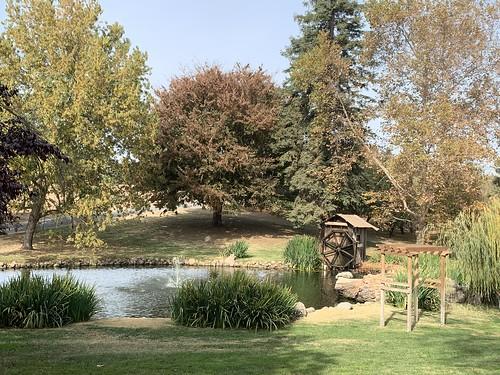 Bloomingcamp Ranch