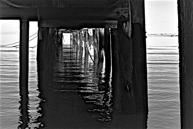 The China Camp Village Pier