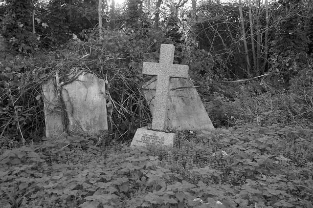 The grave of the once beloved Lizzie Turner