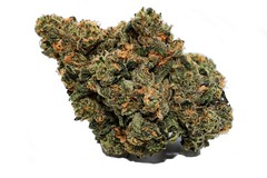 What To Look For In A Hot M.O.M. (Mail Order Marijuana)