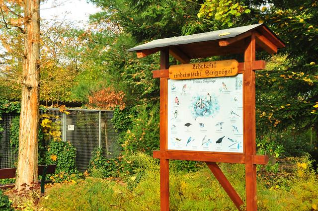 Vogelpark Plankstadt im November 2019 ... Foto: Brigitte Stolle