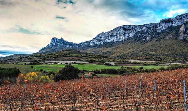 Los contrafuertes de la Sierra de Cantabria.