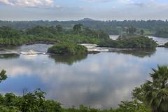 Rapids of the Nile River at Jinja