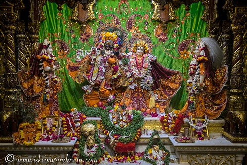 ISKCON Vrindavan Deity Darshan 30 Nov 2019