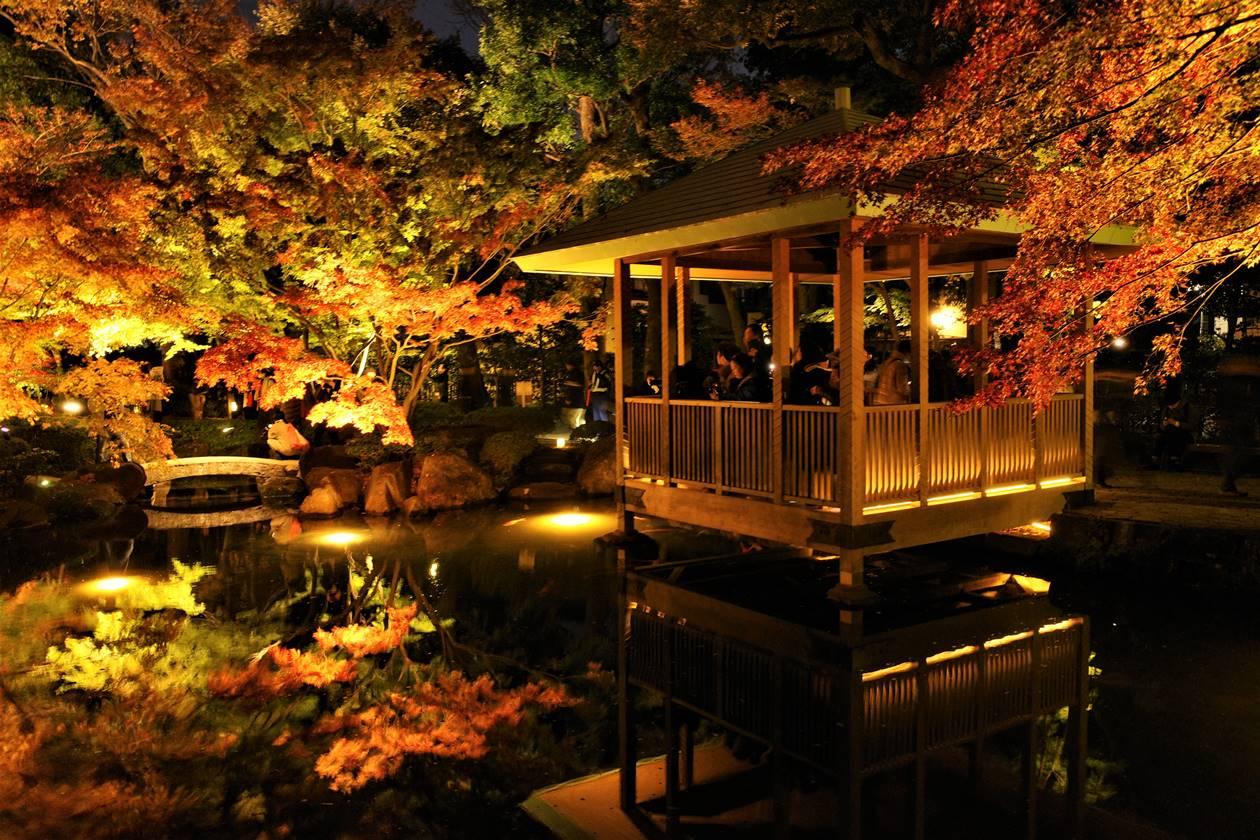 紅葉ライトアップ 池の東屋と紅葉