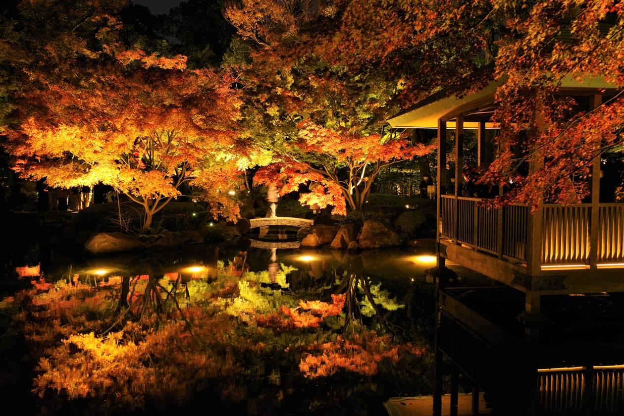 大田黒公園 東屋と池の紅葉ライトアップ