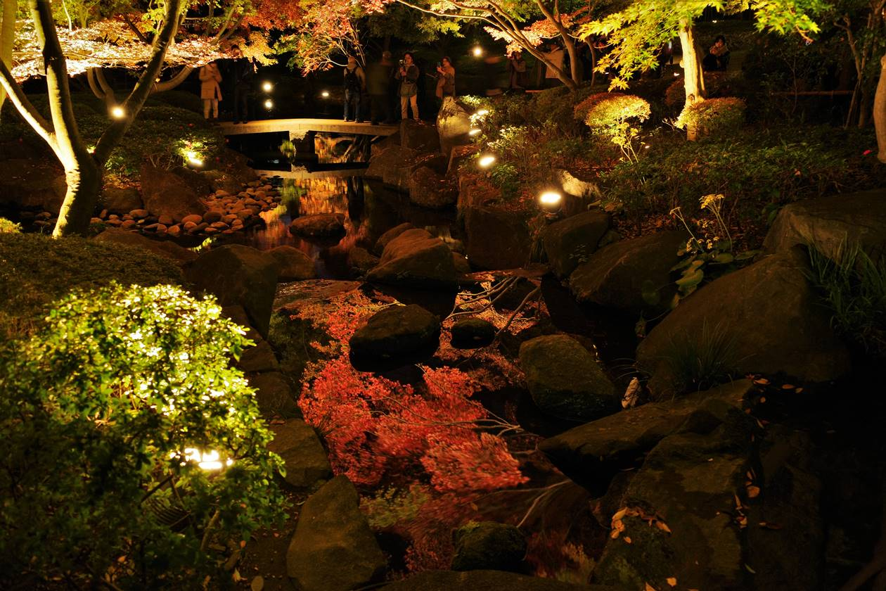 大田黒公園 鏡のように水面に映し出される紅葉