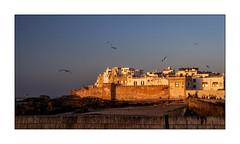 Postcard from Essaouira