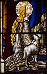 St Agnes (Alex Booker of Bruges)