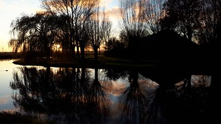 pond reflections at sunset, Sneek | by Alta alatis patent