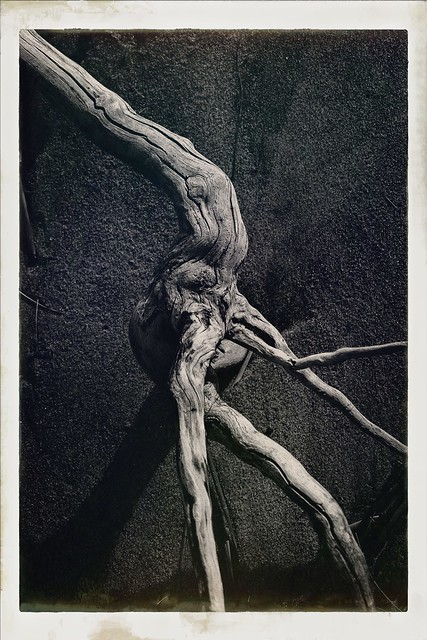 The Pale Man - Pan's Labyrinth