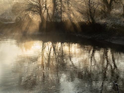 334-2019-365-(1430) Misty Frosty Morning (Explored)