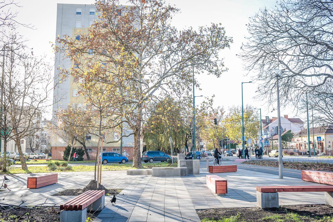 Kizöldült Belső-Tarján: felújított közterei mellé fákat és közösségi kerteket is kapott a városrész