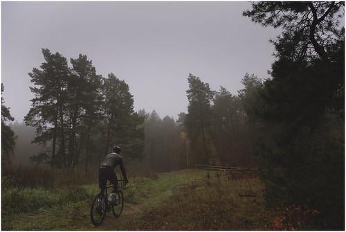 riding though familiar places